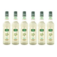 Teisseire - Pack de 6 sirops fleur de sureau