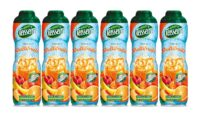 Teisseire - Pack de 6 sirops multifruits