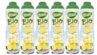 Teisseire - Pack de 6 sirops de citron BIO